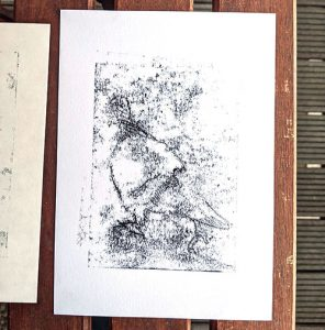 Photography of a poorly printed monotype of a pigeon.