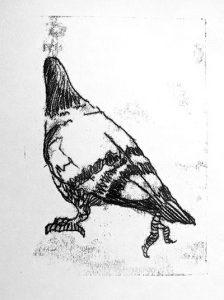 Monoprint of a pigeon, printed on Hosho Pad, 90gsm.