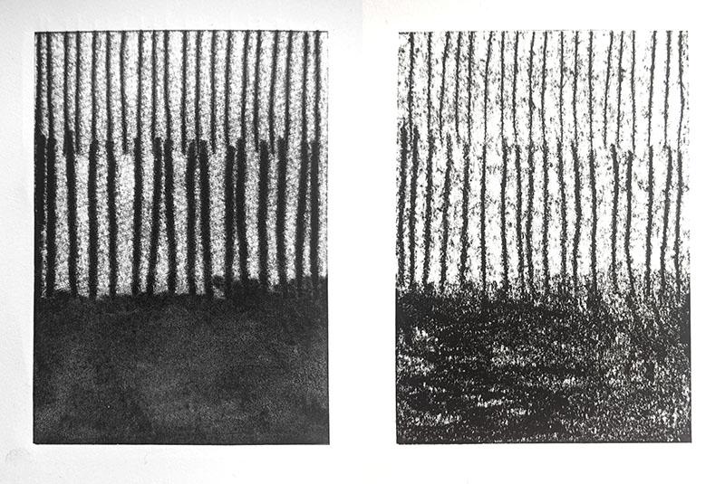 Left: monoprint on Somerset Satin Right: monoprint on Fabriano Eco