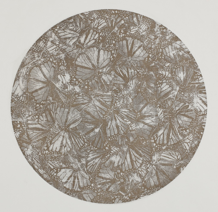The Monarch Butterfly, photo-etching. Circular image filled with Monarch butterflies in a monotone copper colour
