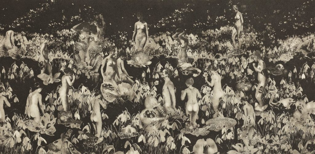 Photopolymer print in made during Return to Make. The image is in a sepia tone and depicts collaged nude figures amongst snow drops and other flora.