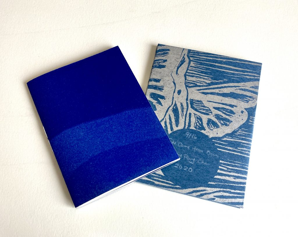 Front cover of two blue books.