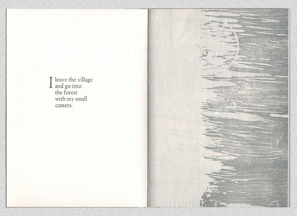 Open page of book with text on the left page. On the right page is a woodcut image that has an abstract texture and is printed in grey.